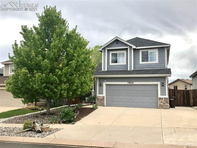 7524 Stormy Way, Colorado Springs, CO 80922 (#4855915) :: Tommy Daly Home Team