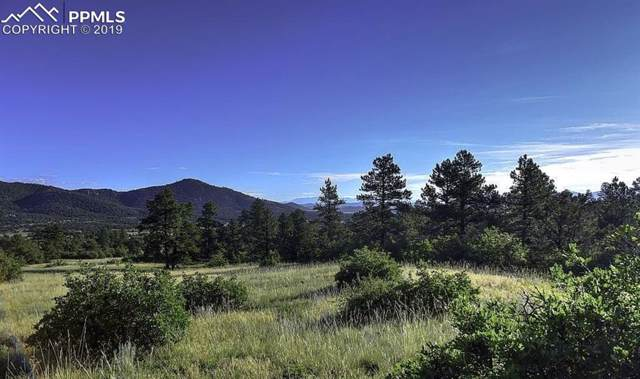 TBD Lot 40 Pheasant Loop, Westcliffe, CO 81252 (#4856834) :: The Treasure Davis Team