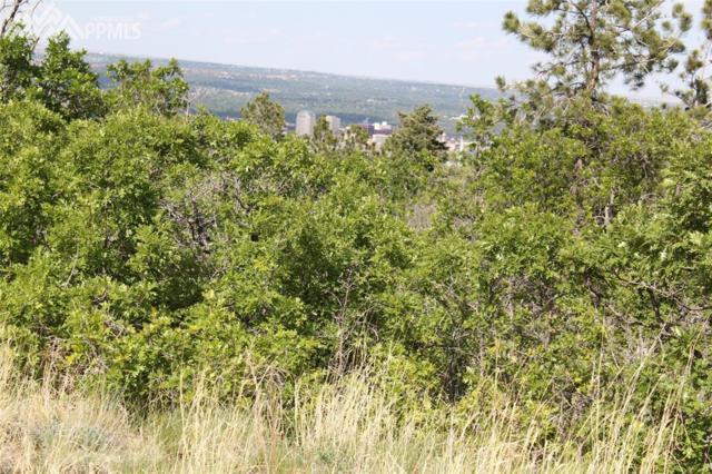1695 Oakmoor Heights, Colorado Springs, CO 80906 (#4861122) :: 8z Real Estate