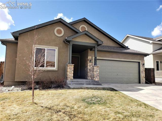 8835 Canary Circle, Colorado Springs, CO 80908 (#4863384) :: Harling Real Estate
