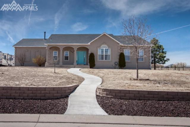 11956 Bonifay Loop, Peyton, CO 80831 (#4865433) :: The Treasure Davis Team