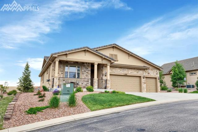 1480 Symphony Heights, Monument, CO 80132 (#4866031) :: 8z Real Estate
