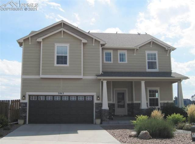 3863 Reindeer Circle, Colorado Springs, CO 80922 (#4866730) :: Tommy Daly Home Team