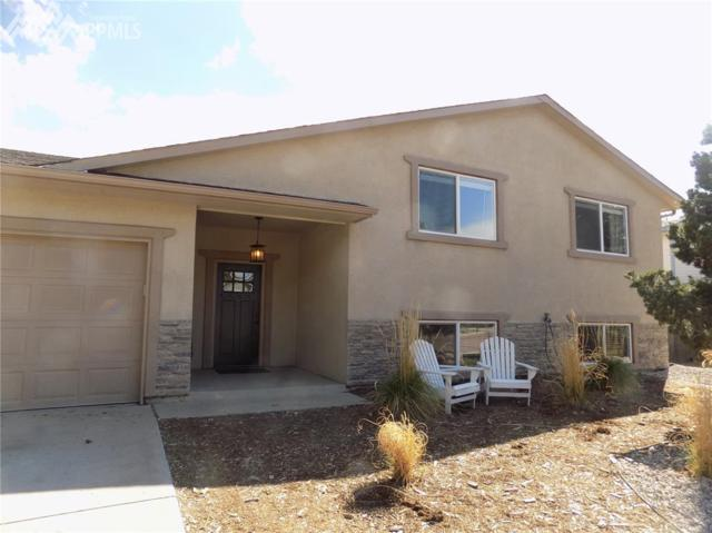 7623 Safari Circle, Colorado Springs, CO 80920 (#4867155) :: 8z Real Estate