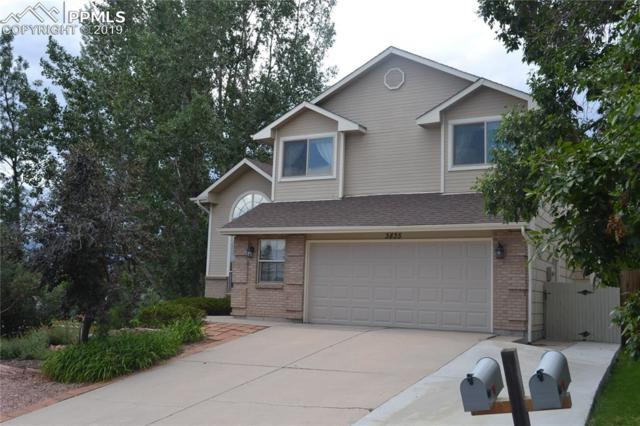 3835 Cranswood Way, Colorado Springs, CO 80918 (#4869085) :: Tommy Daly Home Team