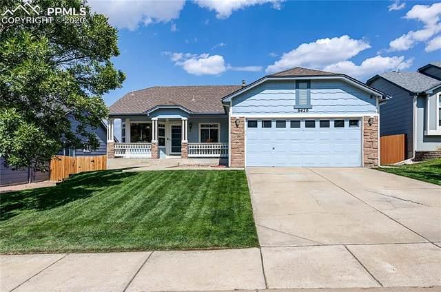 6420 Pinto Pony Drive, Colorado Springs, CO 80922 (#4878995) :: 8z Real Estate