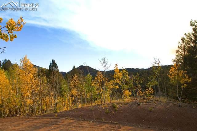 728 Little Topsey Drive, Cripple Creek, CO 80813 (#4881308) :: The Scott Futa Home Team