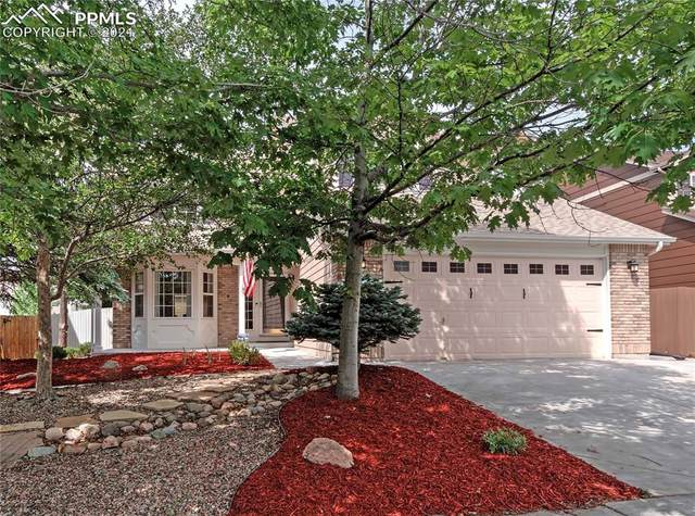 8940 Rochester Drive, Colorado Springs, CO 80920 (#4883830) :: Venterra Real Estate LLC