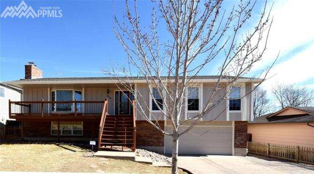 914 Hans Brinker Street, Colorado Springs, CO 80907 (#4885833) :: The Treasure Davis Team