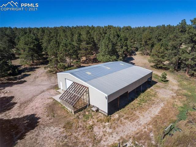 18910 Edgewood Drive, Peyton, CO 80831 (#4889894) :: Tommy Daly Home Team