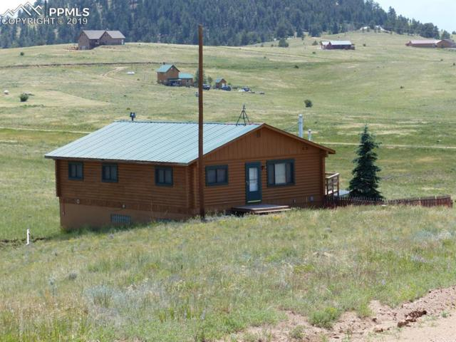 2990 County 341 Road, Westcliffe, CO 81252 (#4890840) :: CC Signature Group