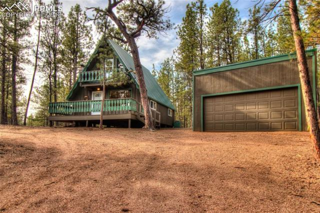94 Pickens Road, Florissant, CO 80816 (#4894772) :: 8z Real Estate