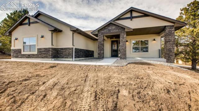 19720 Furrow Road, Monument, CO 80132 (#4895821) :: Jason Daniels & Associates at RE/MAX Millennium