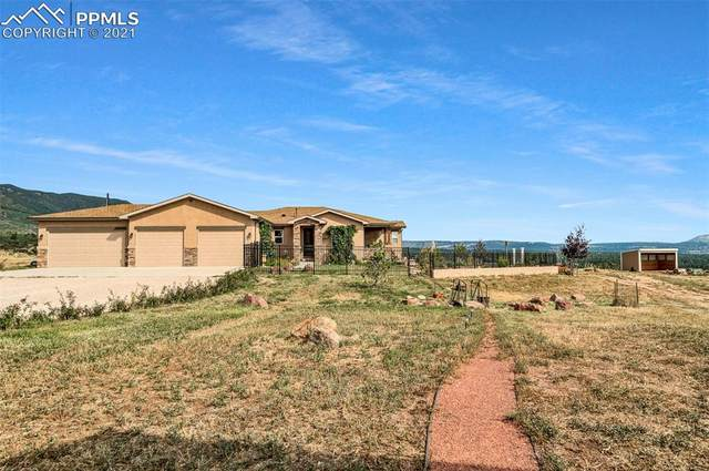 3670 Doolittle Road, Monument, CO 80132 (#4897622) :: Tommy Daly Home Team