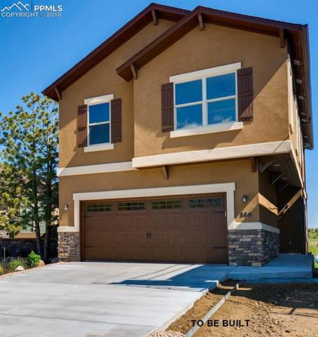 883 Redemption Point, Colorado Springs, CO 80905 (#4900581) :: Fisk Team, RE/MAX Properties, Inc.