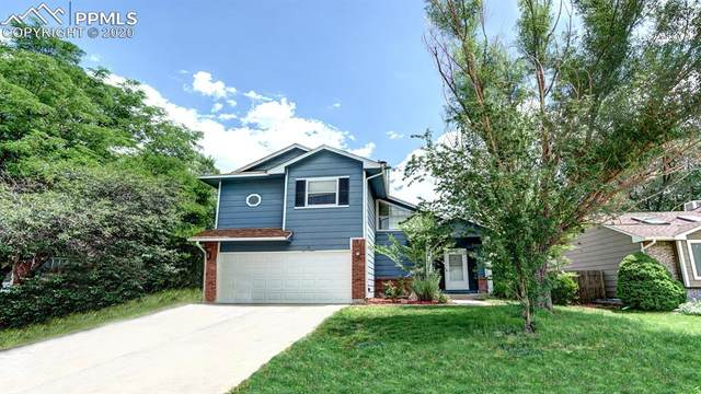 528 Dix Circle, Colorado Springs, CO 80911 (#4901787) :: CC Signature Group