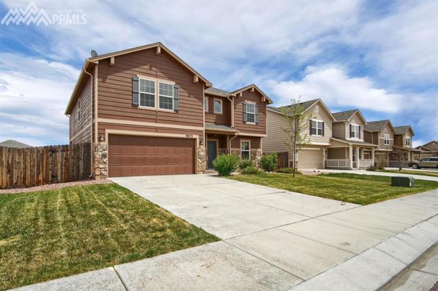 3873 Winter Sun Drive, Colorado Springs, CO 80925 (#4901821) :: Fisk Team, RE/MAX Properties, Inc.