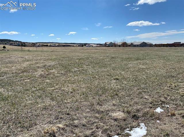 1495 Bowstring Road, Monument, CO 80132 (#4913979) :: Action Team Realty