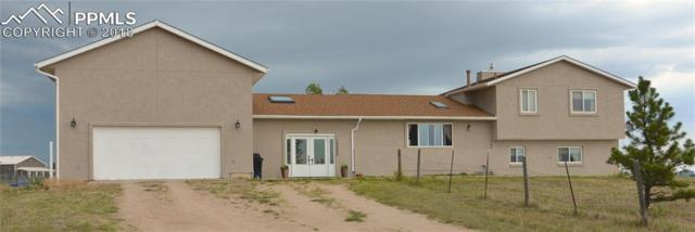 13050 Pommel Circle, Elbert, CO 80106 (#4914860) :: Jason Daniels & Associates at RE/MAX Millennium