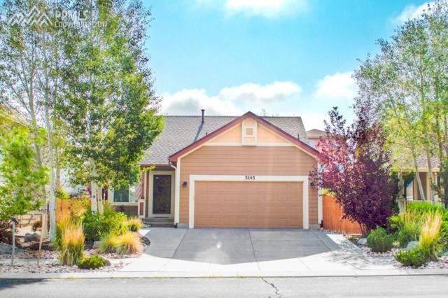 5145 Stone Fence Drive, Colorado Springs, CO 80922 (#4915713) :: 8z Real Estate