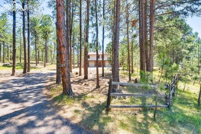 385 Buckskin Way, Monument, CO 80132 (#4917047) :: Action Team Realty
