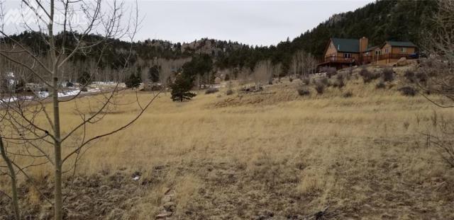 35 Kiowa Trail, Lake George, CO 80827 (#4920756) :: RE/MAX Advantage