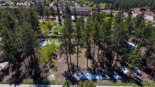 635 Meadowlark Lane, Woodland Park, CO 80863 (#4921205) :: Finch & Gable Real Estate Co.