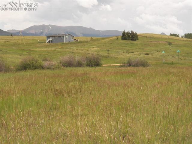 0 Elfin Glen Drive, Divide, CO 80814 (#4923474) :: The Peak Properties Group