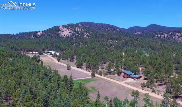 7916 County Road 92 Road, Lake George, CO 80827 (#4925085) :: CC Signature Group
