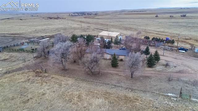 19275 Blasingame Road, Ramah, CO 80832 (#4927867) :: Perfect Properties powered by HomeTrackR