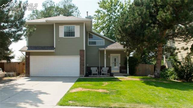 295 Pucket Circle, Colorado Springs, CO 80911 (#4930425) :: Tommy Daly Home Team