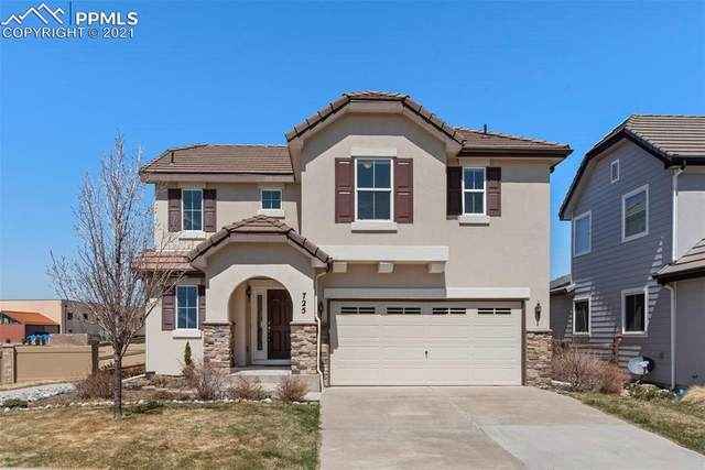 725 Diamond Rim Drive, Colorado Springs, CO 80921 (#4932083) :: The Treasure Davis Team | eXp Realty