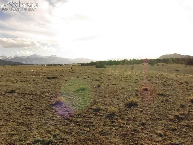 469 Blazing Saddle Trail, Cotopaxi, CO 81223 (#4934211) :: The Kibler Group