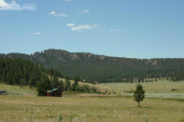 567 High Pasture Road, Florissant, CO 80816 (#4935603) :: The Peak Properties Group