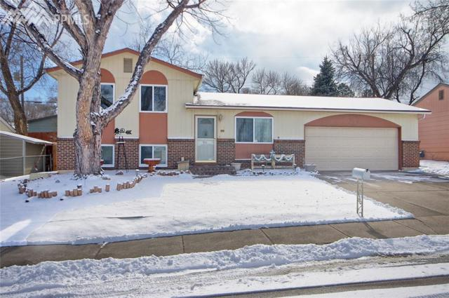 1019 Rice Drive, Colorado Springs, CO 80905 (#4938004) :: The Hunstiger Team