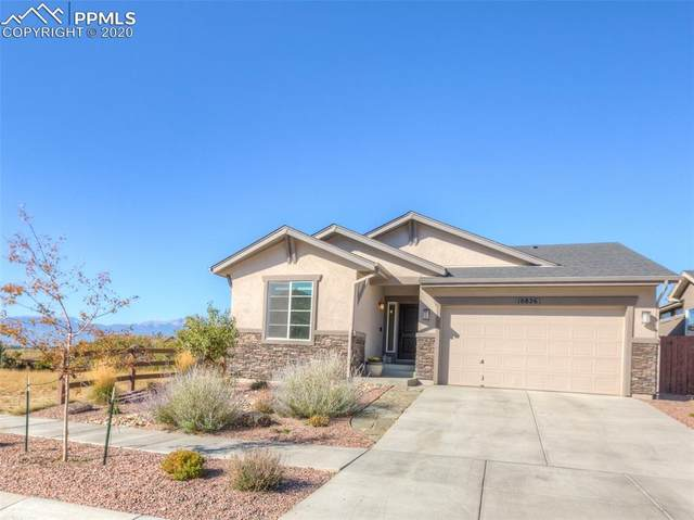 10826 Fossil Dust Drive, Colorado Springs, CO 80908 (#4941025) :: The Treasure Davis Team
