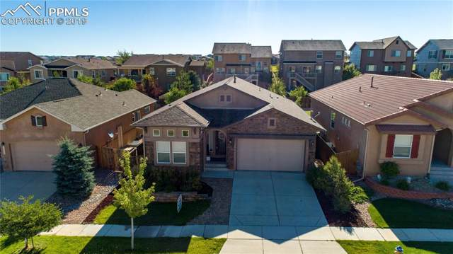 7965 Mount Hayden Drive, Colorado Springs, CO 80924 (#4943743) :: 8z Real Estate