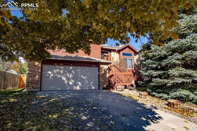3816 Summer Breeze Drive, Colorado Springs, CO 80918 (#4944209) :: Venterra Real Estate LLC