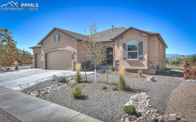 7162 Silver Buckle Drive, Colorado Springs, CO 80923 (#4944561) :: CC Signature Group