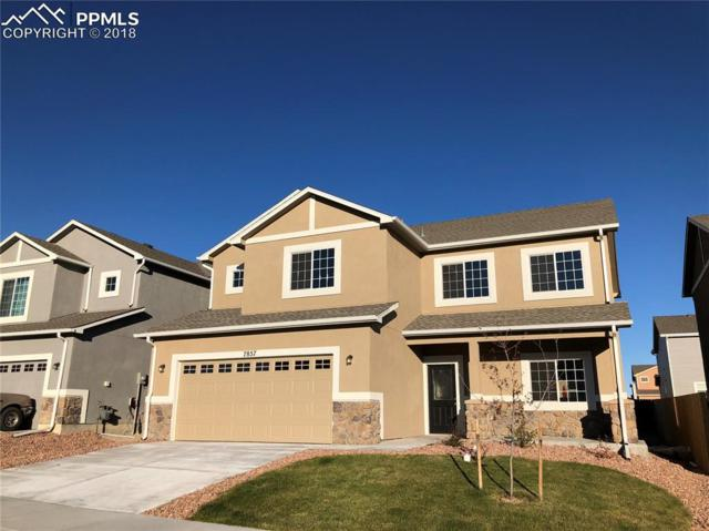7857 Dry Willow Way, Colorado Springs, CO 80908 (#4945884) :: Fisk Team, RE/MAX Properties, Inc.