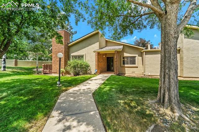 3784 Blue Merion Court, Colorado Springs, CO 80906 (#4945902) :: Fisk Team, eXp Realty