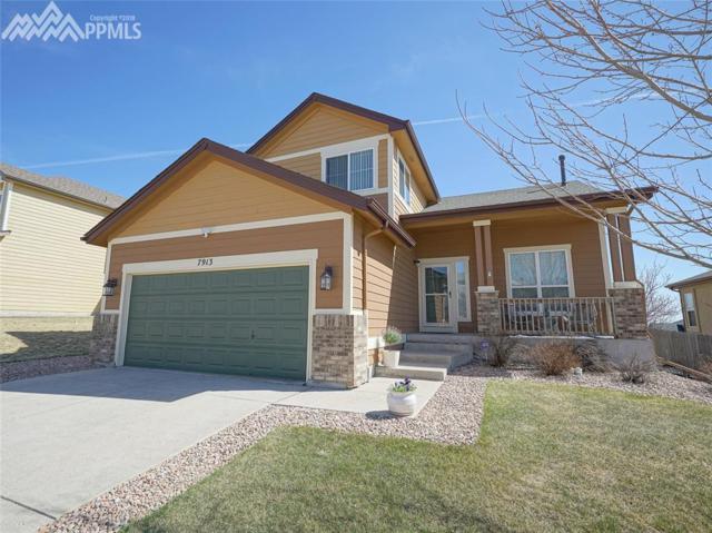 7913 Kettle Drum Street, Colorado Springs, CO 80922 (#4947945) :: The Treasure Davis Team