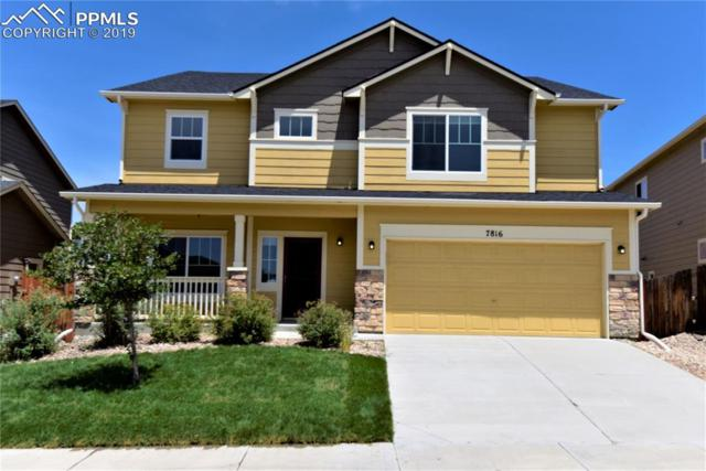 7816 Stockton Drive, Fountain, CO 80817 (#4949402) :: The Daniels Team