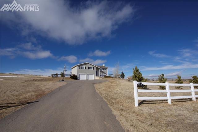 41597 Ricki Drive, Parker, CO 80138 (#4951486) :: 8z Real Estate