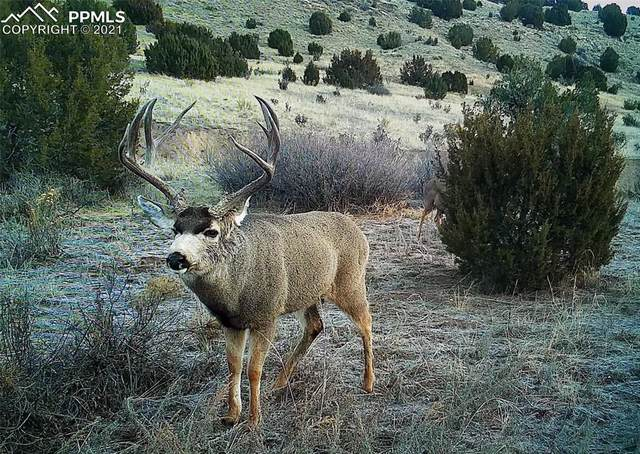 00 Rock Creek Road, Pueblo, CO 81005 (#4953178) :: The Kibler Group