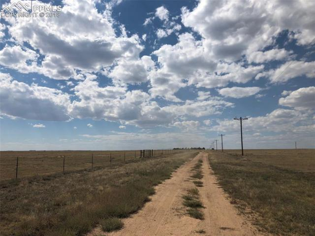 Jacobson Road, Rush, CO 80833 (#4954656) :: Jason Daniels & Associates at RE/MAX Millennium