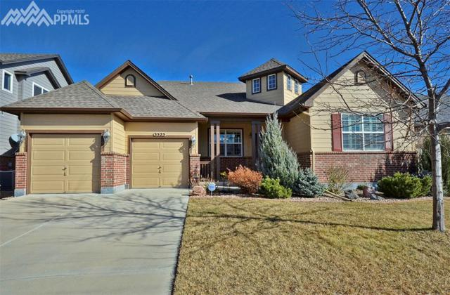 3525 Softwind Point, Castle Rock, CO 80108 (#4958699) :: CENTURY 21 Curbow Realty
