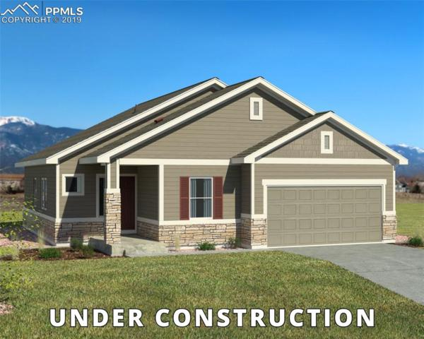 8278 Lodge Grass Way, Colorado Springs, CO 80923 (#4962003) :: The Treasure Davis Team