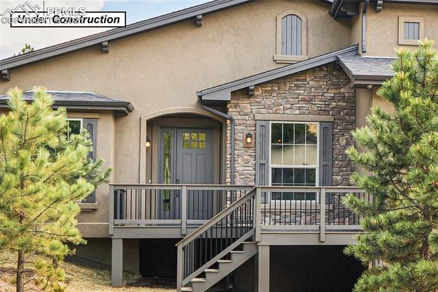 1110 Highlands Court, Woodland Park, CO 80863 (#4963221) :: The Treasure Davis Team