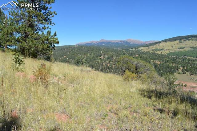 552 Andes Road, Cripple Creek, CO 80813 (#4963728) :: The Daniels Team